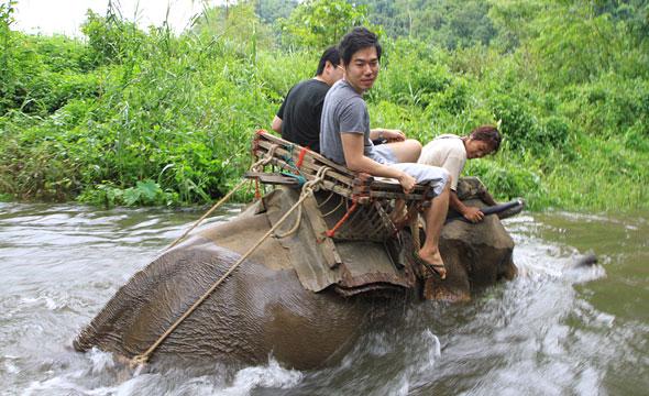 Ranti River Elephant Camp