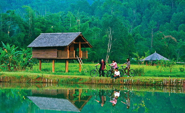things to do, things to do in chiang mai, chiang mai, cycling, bicycle, pine forest, hill tribe, lifestyle